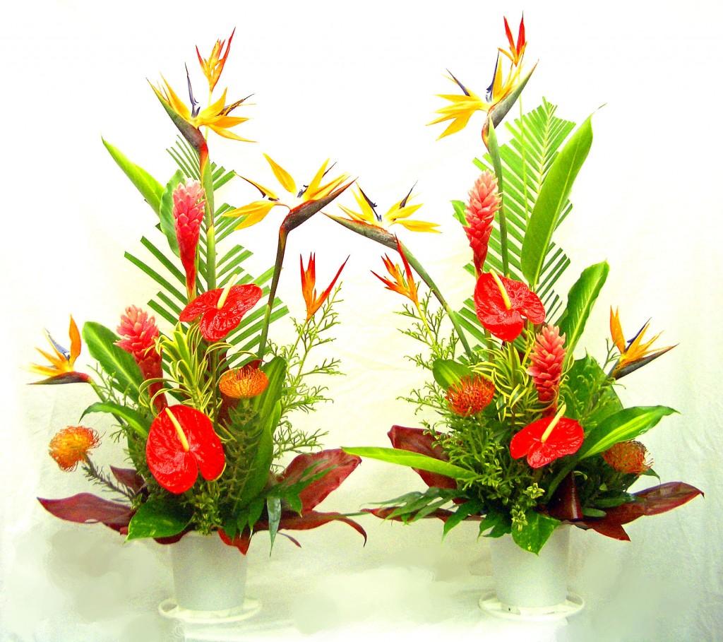 Tropical flower arrangements gallery tropical flower arrangements tropical flower arrangements gallery izmirmasajfo