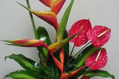 tropical-flower-arrangement-3