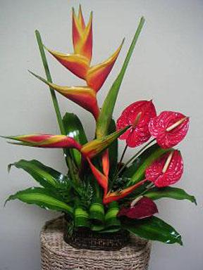 tropical-flower-arrangement-3